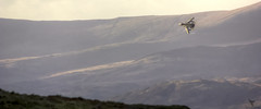 Pulling G's (Andy Tee) Tags: tornado gr4 fighter jet royal air force raf mach loop vapour sunset hills mountains