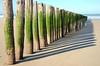 Opale coast beach (Josiane D.) Tags: opale coast beach sand mer du nord ocean france flandre