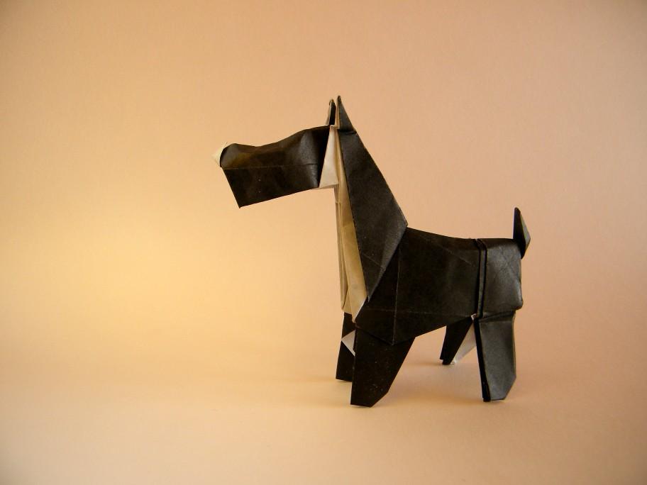 dog origami seth friedman pdf