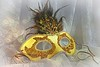 Going to the masquerade ball (Through Serena's Lens) Tags: smileonsaturday mask masqueradeball lace beads feathers closeup stilllife