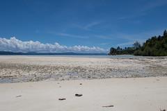 Looks like paradise (pleymalex) Tags: raja ampat indonesia papouasie papua new guinea sea paradise asia kayak trip kayak4conservation