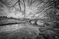 Reaching out! (pm69photography.uk) Tags: dartmoor devon twobridgeshotel bridge bw blackandwhite southwest sony spooky sonya7rii a7rii voigtlander voigtlanderheliarf56 voigtlanderheliar10mmf56 10mm wideangle ultrawide