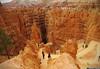 20160821_34 Dark hole | Bryce Canyon, Utah (ratexla) Tags: ratexla'sgreentortoisetrip2016 ratexlascanyonsofthewesttrip2016 greentortoise canyonsofthewest 21aug2016 2016 canonpowershotsx50hs bryce brycecanyon utah usa theus unitedstates theunitedstates america northamerica nordamerika earth tellus photophotospicturepicturesimageimagesfotofotonbildbilder wanderlust travel travelling traveling journey vacation holiday semester resaresor ontheroad hiking hike sommar summer beautiful nature landscape scenery scenic sandstone mountain mountains berg canyon canyons trail trails orange hoodoo hoodoos wallstreet favorite