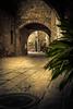 Monells (Agudolypse) Tags: monells urban urbanarchitecture architecture old medieval romanic town smalltown detail details 30mm