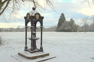 Snow covered at Haslam Park