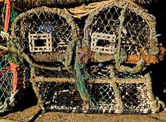 Square Eyes (violetchicken977) Tags: eyesofmarch crabpots pareidolia network