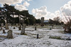Ramsgate Cemetery - Twin Chapels & Tombstones 7 (Le Monde1) Tags: ramsgate kent england ramsgatecemetery county graves tombs tombstones headstones lemonde1 nikon d800e dumptonpark snow georgegilbertscott nonconformist anglican twin chapels