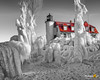 """""""An Icy Splash of Color"""" Point Betsie Lighthouse (Michigan Nut) Tags: landscape winter frozen ice icicles lakemichigan michigan nature pointbetsielighthouse snow lighthouse freezing"""