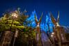 Universal Studios Japan 2017 - Entrance to Hogwarts Castle (JUNEAU BISCUITS) Tags: nikond810 nikon hawaiiphotographer harrypotter harrypotterandtheforbiddenjourney universalstudios universalstudiosjapan osaka castle longexposure jkrowling gargoyle japan