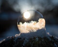 Snow Globe - 2