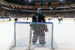 "Kansas City Mavericks vs. Toledo Walleye, January 20, 2018, Silverstein Eye Centers Arena, Independence, Missouri.  Photo: © John Howe / Howe Creative Photography, all rights reserved 2018. • <a style=""font-size:0.8em;"" href=""http://www.flickr.com/photos/134016632@N02/24969296357/"" target=""_blank"">View on Flickr</a>"