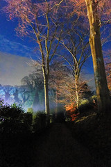 Lights and trees (Blue Pelican) Tags: trees lights sky brodsworthhall southyorkshire