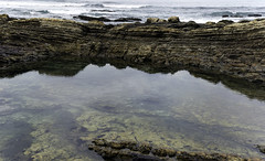 Tide Pool (Joe Josephs: 3,166,284 views - thank you) Tags: california californiacoast californialandscape pacificcoasthighway pacificocean shoreline travel travelphotography westcoast naturalworld nature naturephotography peaceful quiet tranquil tidepools water habitat environment