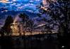 "Fog At Dawn (crimsontideguy-from ""Sweet Home Alabama"" USA) Tags: alabama alabamathebeautiful usa dawn sunrise trees skies cloudsandsky morning daybreak photoshop nikon hdr forrest fog"