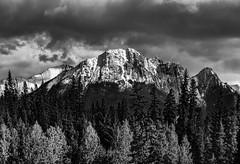 Layered sunbreak (docoverachiever) Tags: banffnationalpark canadianrockies scenery nature alberta mountains canada landscape blackandwhite forest clouds