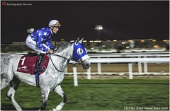 IMG_7211 copy (Services 33159455) Tags: qatar doha horse racing qrec emir horseracing raytohgraphy