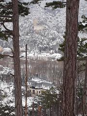 Winter in Baden bei Wien (arjuna_zbycho) Tags: zima winter śnieg snow schneebadenbeiwien kurstadt luftkurort austria stadt city miasto badenbeiwien thermenregion biosphaerenpark niederösterreich österreich rakousko las wald forest natur drzewa świątyniaprzyrody natura woods dendroterapia uzdrawiającamoclasu leczniczaenergiadrzewiroślin drzewapoprawiająsamopoczucieidziałająleczniczo wienerwald zufusindenwald spacerpolesie walkinthewoods spazierendurchderwald walkingthroughtheforest spacerkiempolesie rauchenstein burgruinerauchenstein