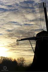 The Mill for the Night (kristianoosterveen) Tags: sunset sun set setting going down riekermolen amsterdam noordholland the netherlands nederland nederlands mill windmill wind silhouette molen windmolen old classic oud klassiek zonsondergang zon ondergang neergang wolken clouds cloud wolk north holland blue yellow geel blauw noord bos bomen trees forest amazing landscape dutch milling rieker zuid