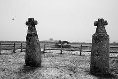 Le gibet des moines (Charles-Fernand) Tags: stèle gauloises neige bretagne saiuntmathieu plougonvelin finistère france