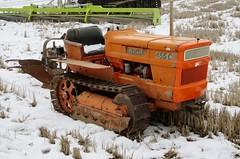 Fiat 455 C (samestorici) Tags: trattoredepoca oldtimertraktor tractorfarmvintage tracteurantique trattoristorici oldtractor veicolostorico crawlertractor trattorecingolato 455c vercellifiere