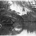 35mm negative taken by Oskar Speck depicting an outrigger canoe with a hut