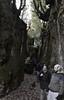 Percorsi (Colombaie) Tags: omogirando visita guidata visite guidate gay friendly turismo lgbt tempolibero gita trekking escursionismo riservaregionaledimonterano monterano parco archeologia arte ruderi abbanono abbandonata città natura ambiente storia lazio canalemonterano tagliata gente persone ritratto uomo uomini maschio scendere flickraward