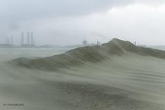 hurricane (fok zaandam) Tags: hurricane storm beach strand haven