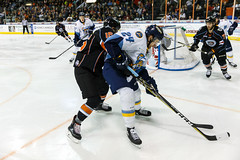 "Kansas City Mavericks vs. Toledo Walleye, January 19, 2018, Silverstein Eye Centers Arena, Independence, Missouri.  Photo: © John Howe / Howe Creative Photography, all rights reserved 2018. • <a style=""font-size:0.8em;"" href=""http://www.flickr.com/photos/134016632@N02/25965928188/"" target=""_blank"">View on Flickr</a>"