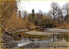 180128 Edwards Gardens (65) (Aben on the Move) Tags: edwardsgardens toronto ontario canada park outdoors nature winter