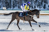 n. 6 (NRG SHOT) Tags: horse whiteturf saintmoritz st moritz stmoritz cavalli corse corsecavalli corsacavalli snow neve mountain luxury nrgshot nikon nikkor d600 fullframe