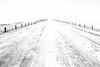 we' re on a road to nowhere (zimpetra) Tags: namibia etosha np deserted road blackwhite landscape