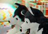 Stuffed animals Ikea 3D (wim hoppenbrouwers) Tags: anaglyph stereo redcyan ikea 3d stuffed animals