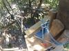 G0121251 (harleyhurricane1) Tags: line zip zipline ziplinepark dadecityflorida treehoppers centralflorida largestziplineparkincentralfl dadecity