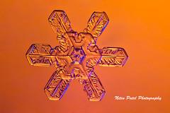 IMG_3262-2 (nitinpatel2) Tags: snowflakes snow winter macro crystal nature nitinpatel