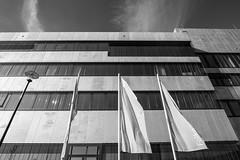 Zollverein2018#1 (henningpietsch) Tags: 2018 deutschland essen essenkaternberg folkwanghochschule germany zechezollverein architektur architecture weitwinkel wideangle sigma sigmaobjektiv sigmarlens sigmar20mmf14dghsm hochschule nrw fensterfront canon bw blackandwhite schwarzweis schwarzweiss