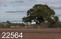 robfrance5d2_22564_280917_x70816_beechingstoke_pewsey_6c26_col_edr16lr6pse15weblowres (RF_1) Tags: 2017 70 70816 ballast beechingstoke berkshantsline berkshantsrailway berksandhantsline berksandhantsrailway boulogne britain class70 colas colasrailfreight diesel england freight ge generalelectric greatwestern greatwesternmainline gwml haulage hauling loco locomotive locomotives mainline mainlinemainline nds networkrail networkrailnationaldeliveryservice p616lda1 powerhaul railfreight railroad railway railways train trains transport transporting uk unitedkingdom wiltshire