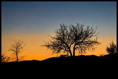 Beautiful sunset in Ardeche ( France) (Ted DEMELUN) Tags: ardeche europe pentax tourism paysages paysage pays holidays france k5 landscapes landscape vacances nature sunset
