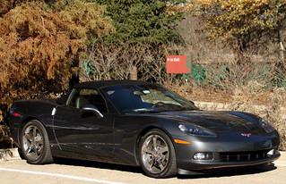 Chevorlet Corvette, Morton Arboretum. (EOS)