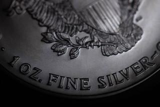 Silver Dollar [Macro Mondays] [Less Than an Inch]