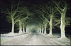 you sure this is the way? (steve-jack) Tags: nikon f5 50mm fujicolour c200 film 135 tetenal c41 kit epson v500 hertfordshire buntingford night snow winter