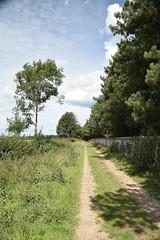 Wall (Worthing Wanderer) Tags: norfolk summer sunny farmland coast seaside nelson holkham burnham hero august