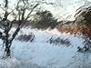 Gloomy winter (saudades1000) Tags: freezing cold gloom gloomy winter