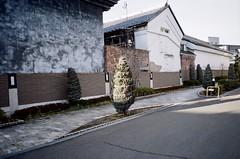 000442080020 (dying slowly) Tags: analog analogphotography streetphotography konica 現場監督28wb kodak 135 film colorplus