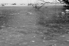 Pics dans la glace (zuhmha) Tags: villaudemard france neige snow hiver winter nature montagne mountain ice gel glace lac lacgelé monochrome