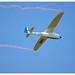 Vogt - Lo-100 Zwergreiher AB-34    D-1060