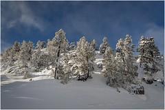 Larra-Belagua010 (Fermin Ezcurdia) Tags: larra belagua navarra pirineo nieve pyrenees esquinordico arlasarette anie