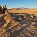 Namib afternoon shadows 1