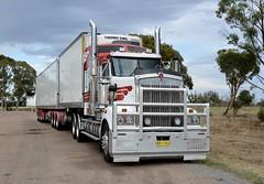Wickhams (quarterdeck888) Tags: trucks transport semi class8 overtheroad lorry heavyhaulage cartage haulage bigrig jerilderietrucks jerilderietruckphotos nikon d7100 frosty flickr quarterdeck quarterdeckphotos roadtransport highwaytrucks australiantransport australiantrucks aussietrucks heavyvehicle express expressfreight logistics freightmanagement outbacktrucks truckies wickhams wickham wickhamfreightlines t909 kenworth bdouble vawdrey fridgevan