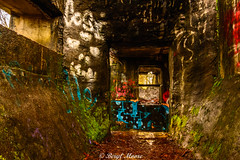 _DSC6622 (photogberyl) Tags: graffiti derelict structure art pnw abandoned winter