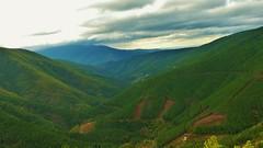 Serra da Estrela, Portugal (AnaValle) Tags: serra paisagem montanha árvore floresta campo céu nuvens vale encostas